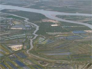 Les marais de l'estuaire de la Seudre