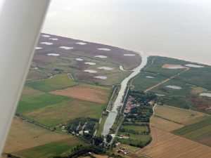 La création de zones humides sur les berges de la Gironde