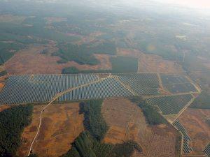 Ferme solaire dans le massif landais